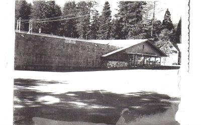 Goodwins 1958