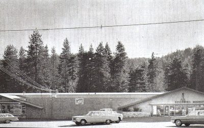 Goodwins 1963-2